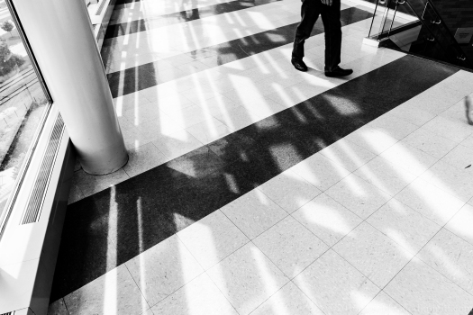 Casting Shadows.jpg